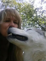 Healing Touch Practitioner Dog Walker and Pet sitter.