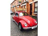 Classic beetle.