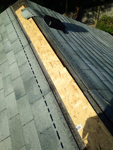 Painting, Landscaping, Junk removal, Shed builds, Roofing. Sarnia Sarnia Area image 7