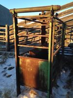 Roping Chute forsale