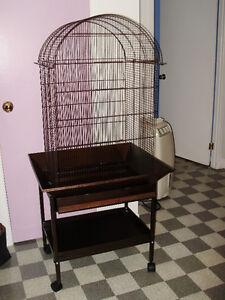 Cage pour oiseaux Saguenay Saguenay-Lac-Saint-Jean image 2