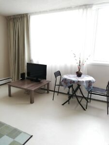 A furnished one bedroom bachelor flexible rental term