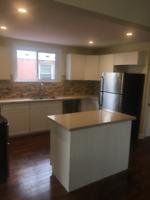 Home renovation/Handyman
