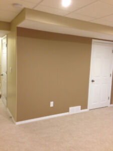 PROFESSIONAL EXPERIENCED PAINTER