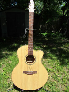 Seagull Natural Elements mini-jumbo CW acoustic guitar