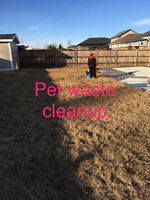 Spring clean up / pet waste pick up / lawn cuts and more