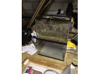 2x 24l starter fish tanks