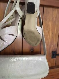 Mother of pearl shoes and matching bag