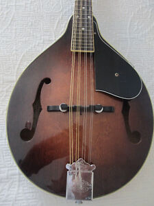 Washburn Mandolin M-2S GB & Soft Case