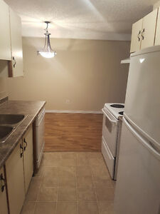 Telus 1 year and  Jan Free!!! renoed 1 bed near Whyte ave