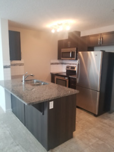 Super secure 1 BEDROOM condo with underground parking w/washbay