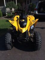 Can-Am DS 250 with HEATED HAND GRIPS AND THUMB WARMER