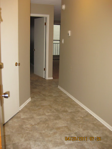 Attractive, quiet 1 bedroom, perfect for downtown professionals