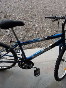 18 speed super cycle bike in blue colour Cambridge Kitchener Area image 5