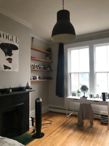 Beautiful South End Bachelor - All Inclusive