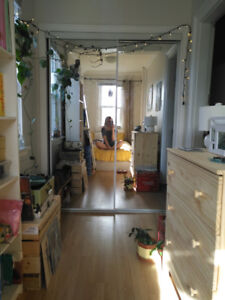 1 Bedroom Sublet/Lease Takeover on Pepperell St