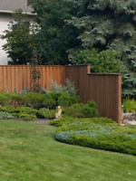 Want that fence before winter??