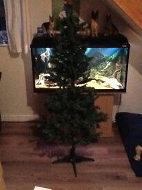New Christmas tree from Argos