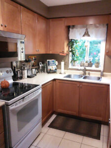 Kitchen Cabinets - Good Condition
