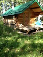 Small log cabin to be moved