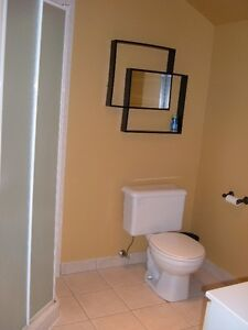 Large one bedroom basement apartment