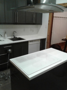 NEWLY RENOVATED 5 1/2 CONDO IN OUTREMONT FOR RENT (WITH PARKING)