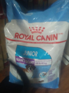 Royal Canin Junior Giant  Puppy Food