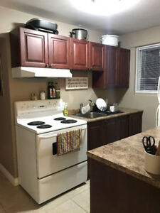 Large 2 Bedroom Apartment - North Bay