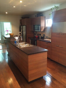 Modern 3 + 1 bedroom detached house for rent / St. Clair West