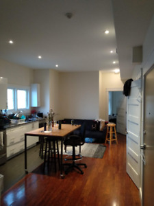 Summer sublet (anytime April 24th-Aug 31): Beautiful apartment