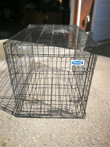 Petmate Dog Crate Kennel Cage
