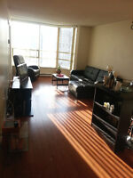 PG Room for rent In SQ ONE area Sub-Penthouse