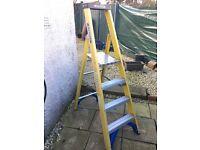 Werner 4 step ladder