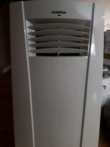 Goldstar Large Portable AC