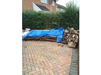 Free fire wood (3 yr old conifer) and old roof baton for collection
