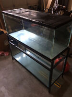 2 80 gallon reptile/fish/rodent tanks with stand