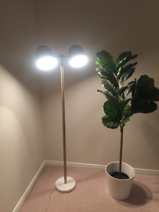 Brand new floor lamp