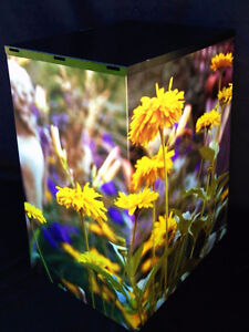 Filing Cabinet wrapped in floral scenery