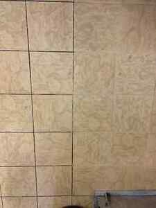 Carpet Cleaning, Tile & Grout Cleaning, Upholstery Cleaning Oakville / Halton Region Toronto (GTA) image 2
