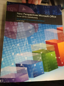 New perspecrives Microsoft office excel