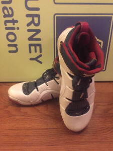 Nike Air Zoom Lebron James Playoff Cavalier Shoes Size 12.5