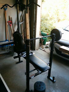 Weight Bench Combo - Everlast EV-25120