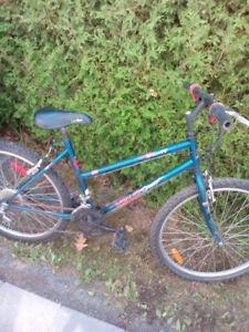 vélo de montagne pour fille