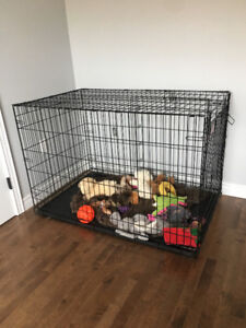Extra large dog krate/kennel