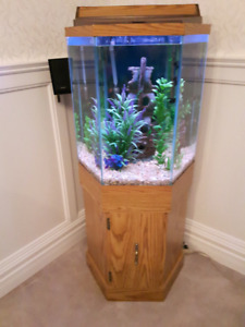 For Sale Really Nice Octagon Fish Tank and Accessories