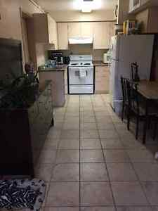Winter - Summer Sublet 1 room available January - August Kitchener / Waterloo Kitchener Area image 3