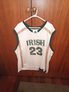 LeBron James fighting Irish jersey Doubleview Stirling Area Preview