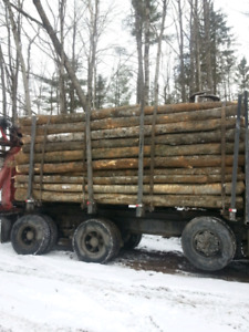 LOG LENGTH FIREWOOD