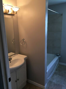 1 Room available in 6 Bedroom / 2 Bath home, recently renovated Belleville Belleville Area image 4