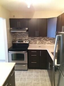 BEAUTIFUL COMPLETELY RENOVATED 1400SQ FT 3 BED, 2 BATH SUITE